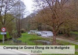 camping Molignée